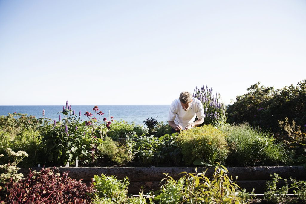 "Michelin-chef Nicolai Nørregaard: ""I'm an advocate of the nature"""